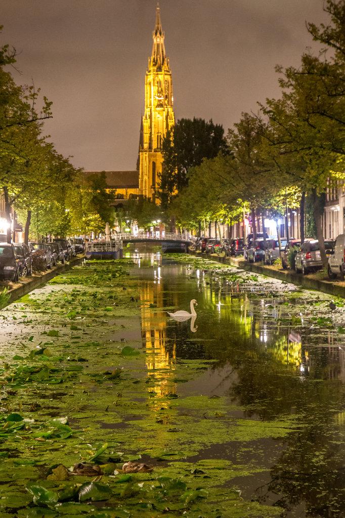 Poser Swan in Delft